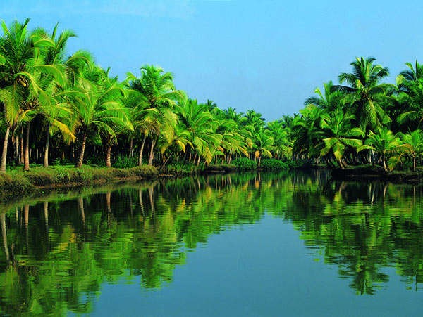 kerala travel destination
