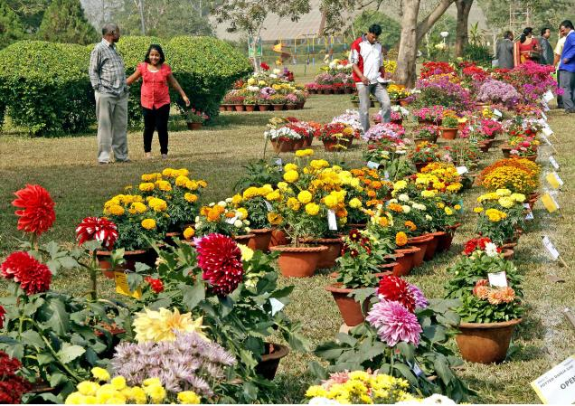 Garden for Rituals of Puri Jagannath Temple